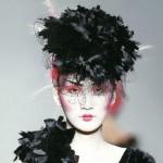 Black Velvet Carnation